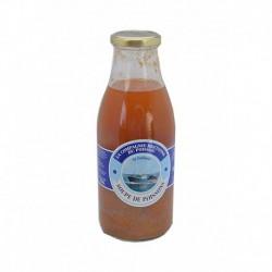 Soupe de poissons de St Guénolée