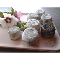 Mirvine : fromages devache frais
