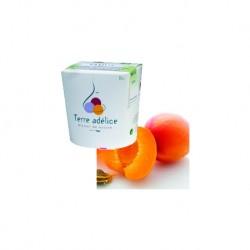 Mirvine : Sorbet abricot bio Terre Adélice