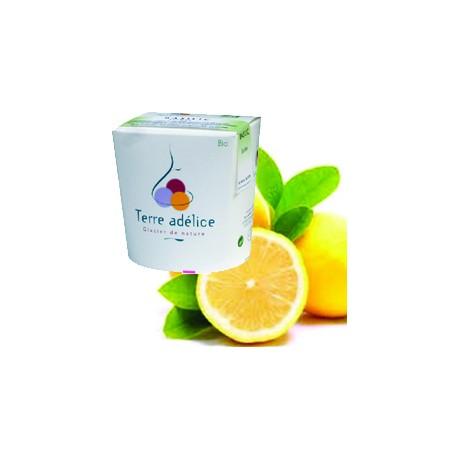 Mirvine : Sorbet citron-basilic bio Terre Adélice