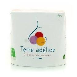 Mirvine : Sorbet chocolat au lait bio Terre Adélice