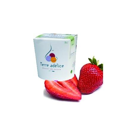 Mirvine : Sorbet fraise bio Terre Adélice