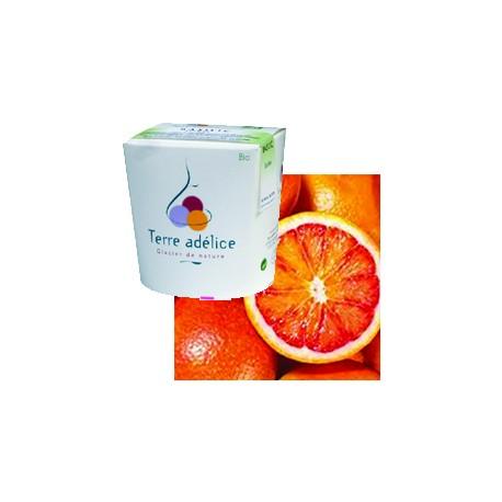 Mirvine : Sorbet orange sanguine bio Terre Adélice
