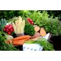Panier fruits et légumes mini - Mirvine