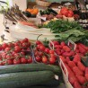 Panier fruits et légumes maxi- Mirvine